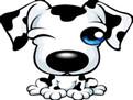 【出生时辰五行查询】五行分析之出生在狗年的人