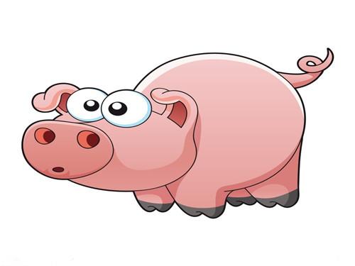 【2015年8月9日属什么】2015年8月9日,属猪人的今日运势