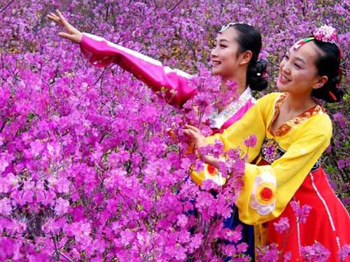 中国少数民族节日大全|少数民族—朝鲜族节日大全