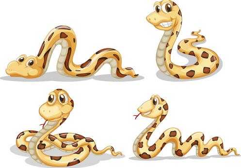 属蛇起名宜用字大全|生肖起名之属'蛇'的宜忌用字