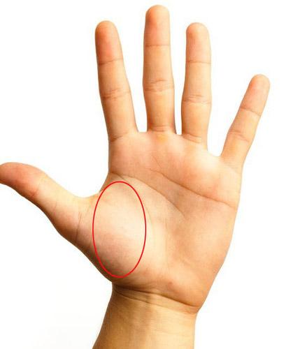 吓人的拼音_准到吓人的手相解析  右手掌纹路准确解析