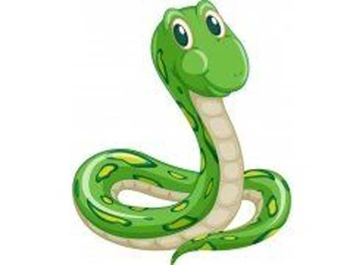 蛇宝宝取名宜用字 十二生肖取名之蛇宝宝取名大全