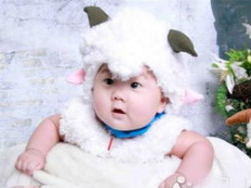 [最新最好听的羊年宝宝名字大全]最新最好听的羊年宝宝名字大全
