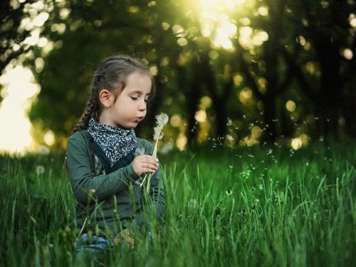 诗经取名女_利用诗经为女孩起名的技巧,这样起名字更优美