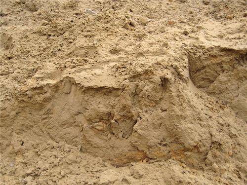 梦见沙子堆成山_梦见沙子成堆怎么回事
